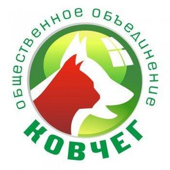 Ялтинцы активно поддерживают «Ковчег» (фото) - фото 1