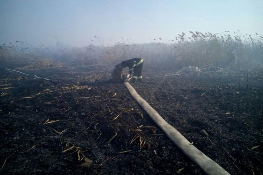 Чтобы в Чернигове не было смога, наши пожарные работали в Киевской области (фото) - фото 1