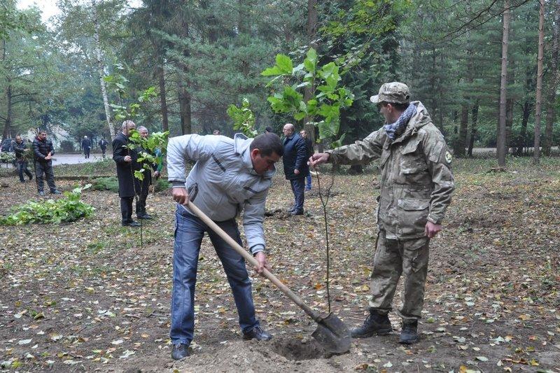 На Богородчанщині, вшановуючи захисників України, заклали алею, фото-2