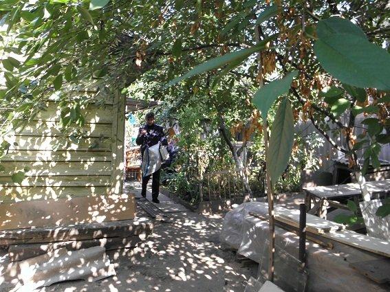 В Киеве женщина избила и задушила мать (ФОТО, ВИДЕО) (фото) - фото 1