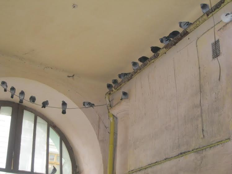 Коли відремонтують під'їзд на вулиці Театральній? (ФОТО) (фото) - фото 3