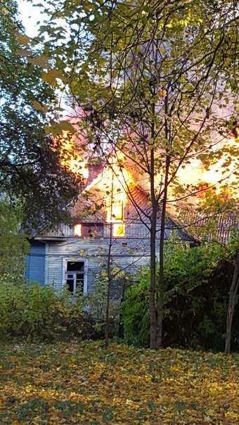 В городе Пушкине, неподалеку от дома-усадьбы Чистякова, произошел пожар (фото) - фото 1