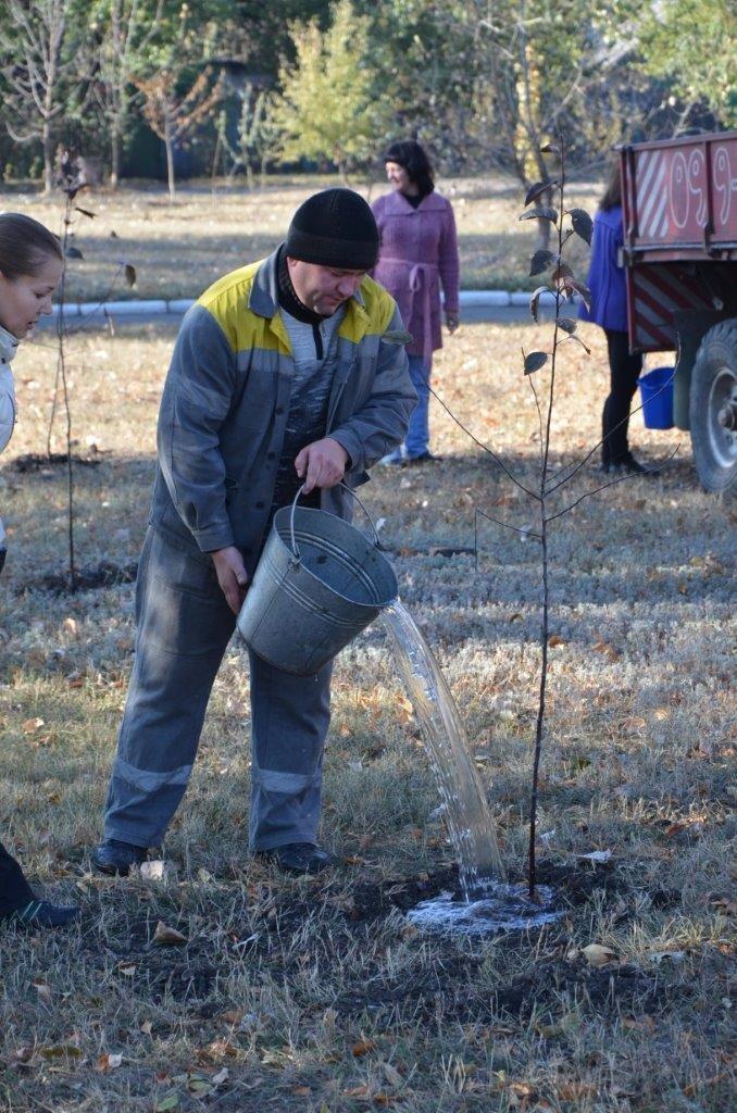 высадка деревьев в п. Новодонецкое