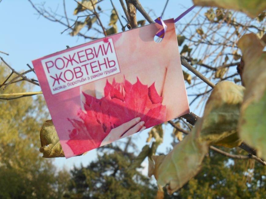 В Славянске прошла акция, посвященная Всеукраинскому Дню борьбы с раком молочной железы (фото) - фото 14