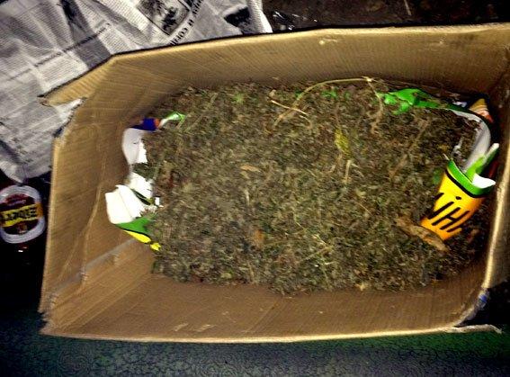 На Полтавщині 23-річний юнак зберігав вдома майже 2 кілограми коноплі (фото) - фото 1