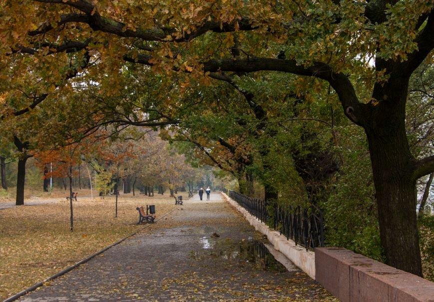 Одесский парк Шевченко глубокой осенью (ФОТО) (фото) - фото 6