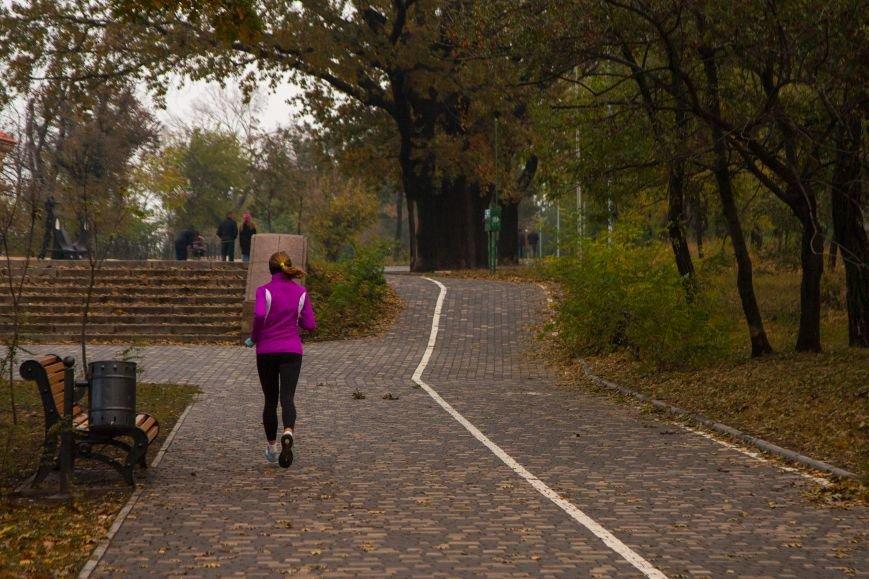 Одесский парк Шевченко глубокой осенью (ФОТО) (фото) - фото 7