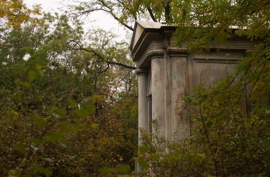 Одесский парк Шевченко глубокой осенью (ФОТО) (фото) - фото 2