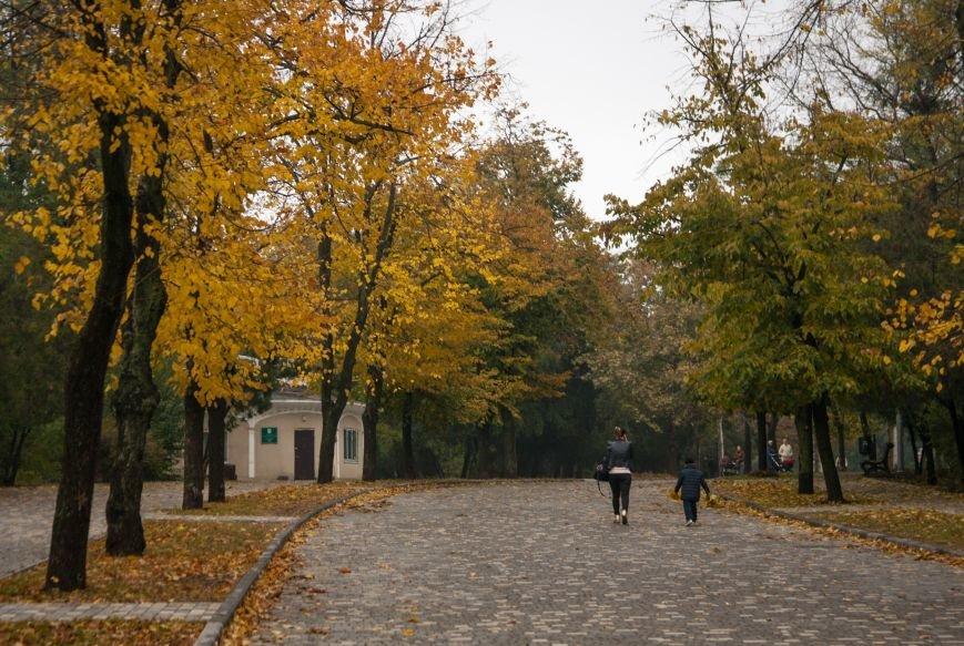Одесский парк Шевченко глубокой осенью (ФОТО) (фото) - фото 1