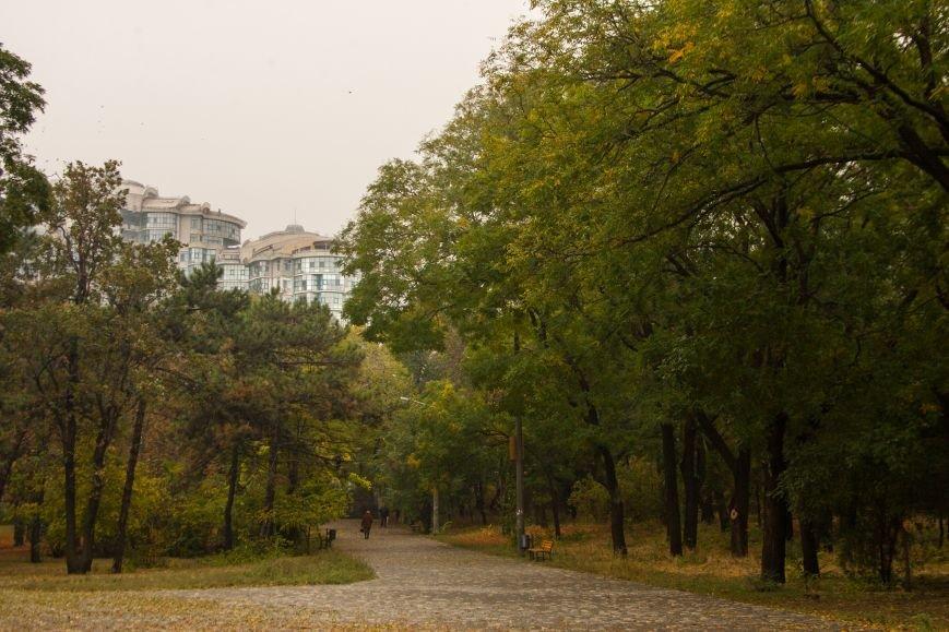 Одесский парк Шевченко глубокой осенью (ФОТО) (фото) - фото 4