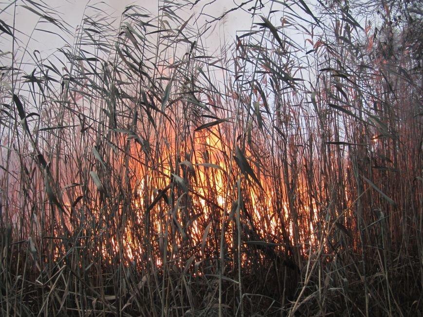 На Полтавщині горить 112 га торфу (ФОТО) (фото) - фото 3
