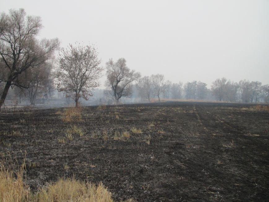 На Полтавщині горить 112 га торфу (ФОТО) (фото) - фото 2