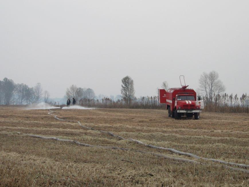 На Полтавщині горить 112 га торфу (ФОТО) (фото) - фото 6