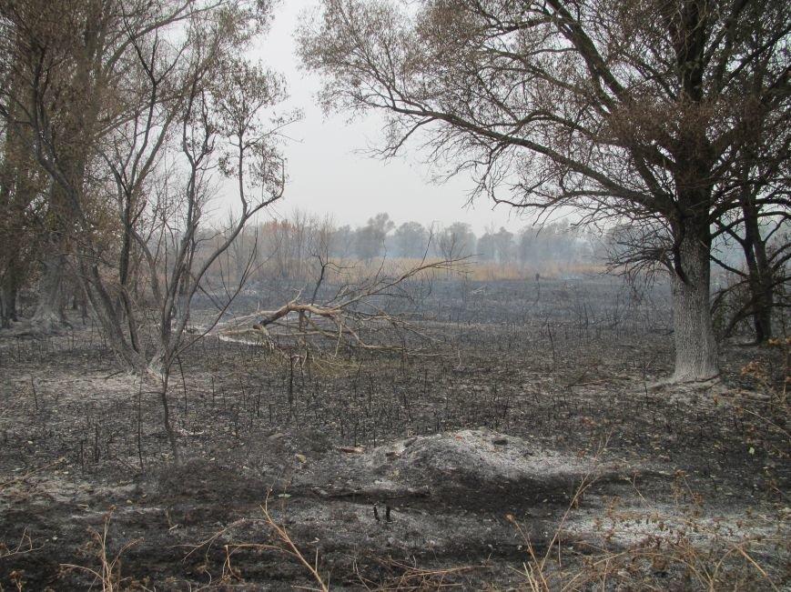 На Полтавщині горить 112 га торфу (ФОТО) (фото) - фото 1