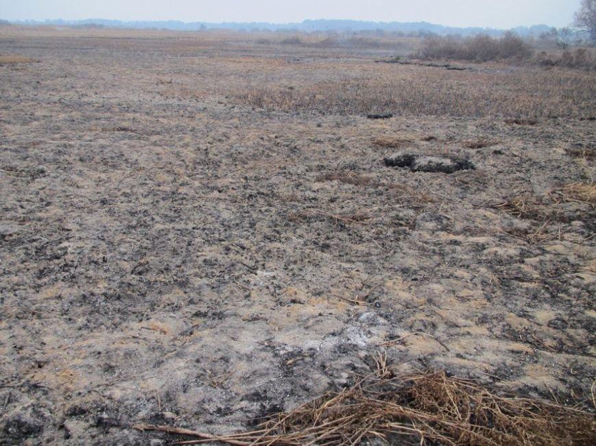 На Полтавщині горить 112 га торфу (ФОТО) (фото) - фото 9