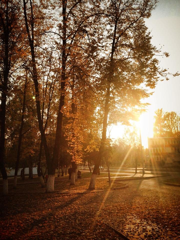 Осенний Гомель глазами популярного рэпера Баста и известного актера Сергея Безрукова, фото-15