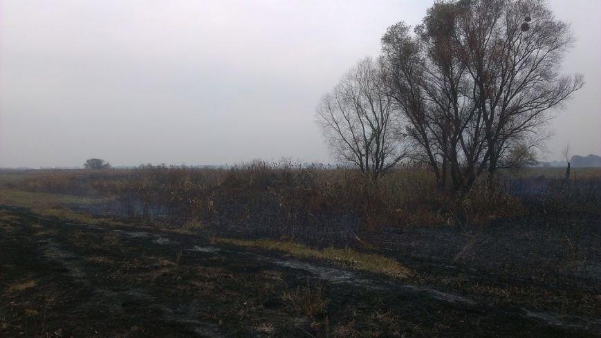 На Полтавщині тліє і горить понад 100 гектарів торфу: у смогу Хорол, Глобино і Лубни (ФОТО, ВІДЕО ) (фото) - фото 3
