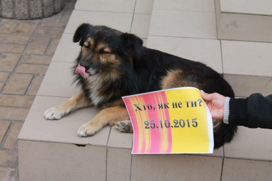 Днепродзержинская молодёжь провела флешмоб «Я иду на выборы» (фото) - фото 9