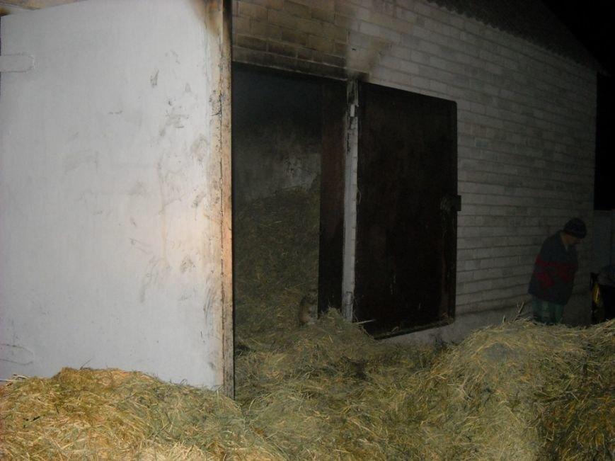Новгородка: ліквідовано пожежу в гаражі (фото) - фото 1