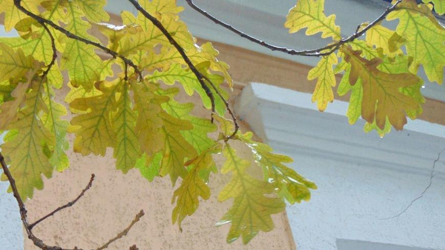 Фотопятница: «Город, поменявший цвет» (фото) - фото 5