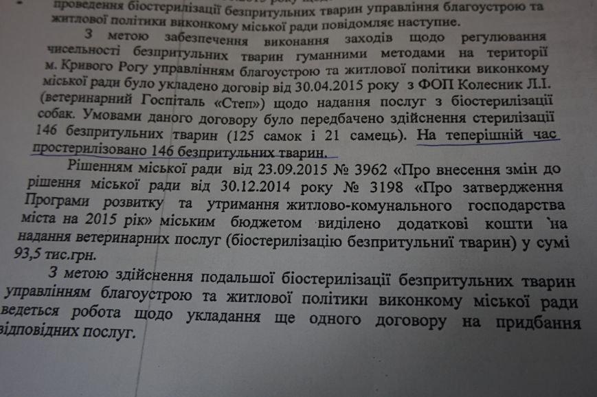 За стерилизацию и послеоперационный уход за каждой  бездомной собакой из бюджета Кривого Рога оплачивалось 1700 гривен (ФОТО) (фото) - фото 2