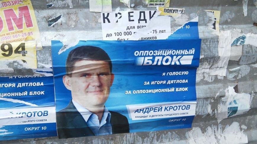 В день выборов на улицах Николаева продолжает висеть политическая агитация (ФОТО) (фото) - фото 8
