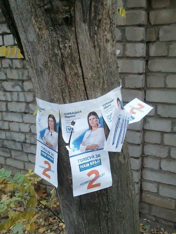 В день выборов на улицах Николаева продолжает висеть политическая агитация (ФОТО) (фото) - фото 1