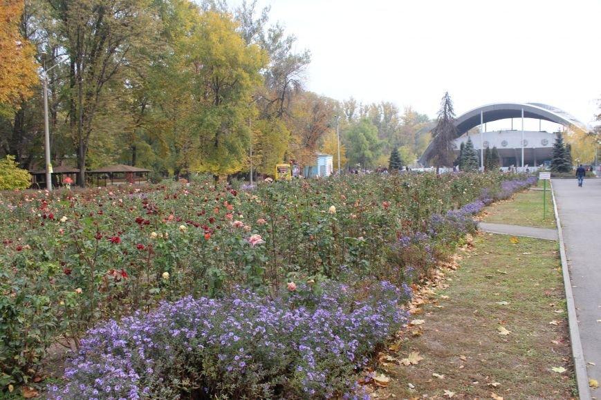 Осень в Днепропетровске: самые красивые парки и скверы (ФОТО), фото-2