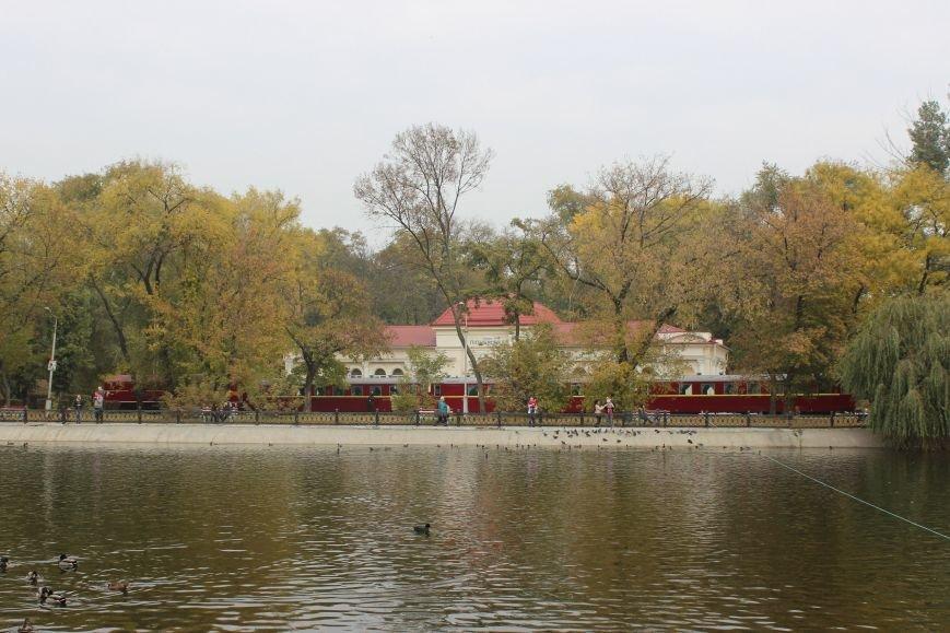 Осень в Днепропетровске: самые красивые парки и скверы (ФОТО) (фото) - фото 2