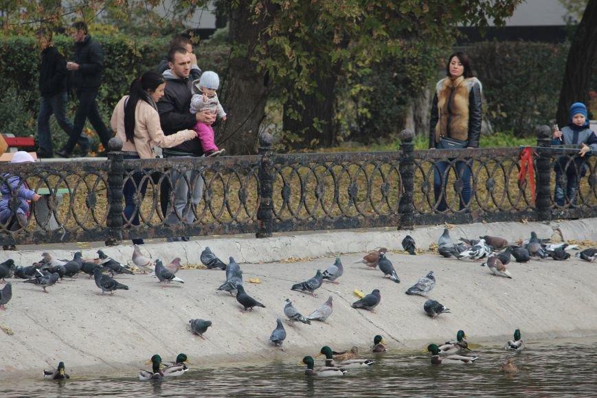 Осень в Днепропетровске: самые красивые парки и скверы (ФОТО) (фото) - фото 3