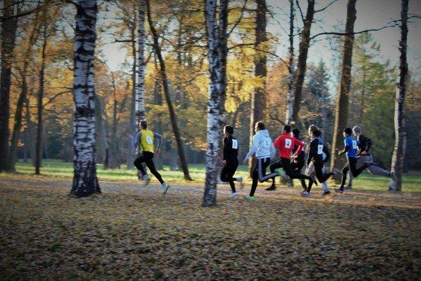 Студенты Аграрного университета пробежали осеннюю эстафету, фото-1