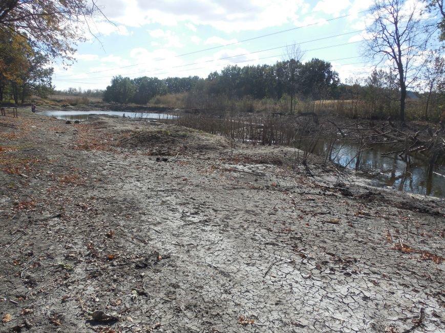 Химия и отходы вместо воды: под Харьковом «народный» пруд был уничтожен промышленностью (ВИДЕО) (фото) - фото 1