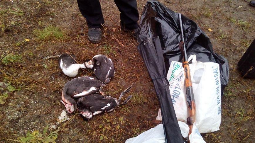 В Черниговской области браконьеры в день выборов на границе убивали уток (фото) - фото 1