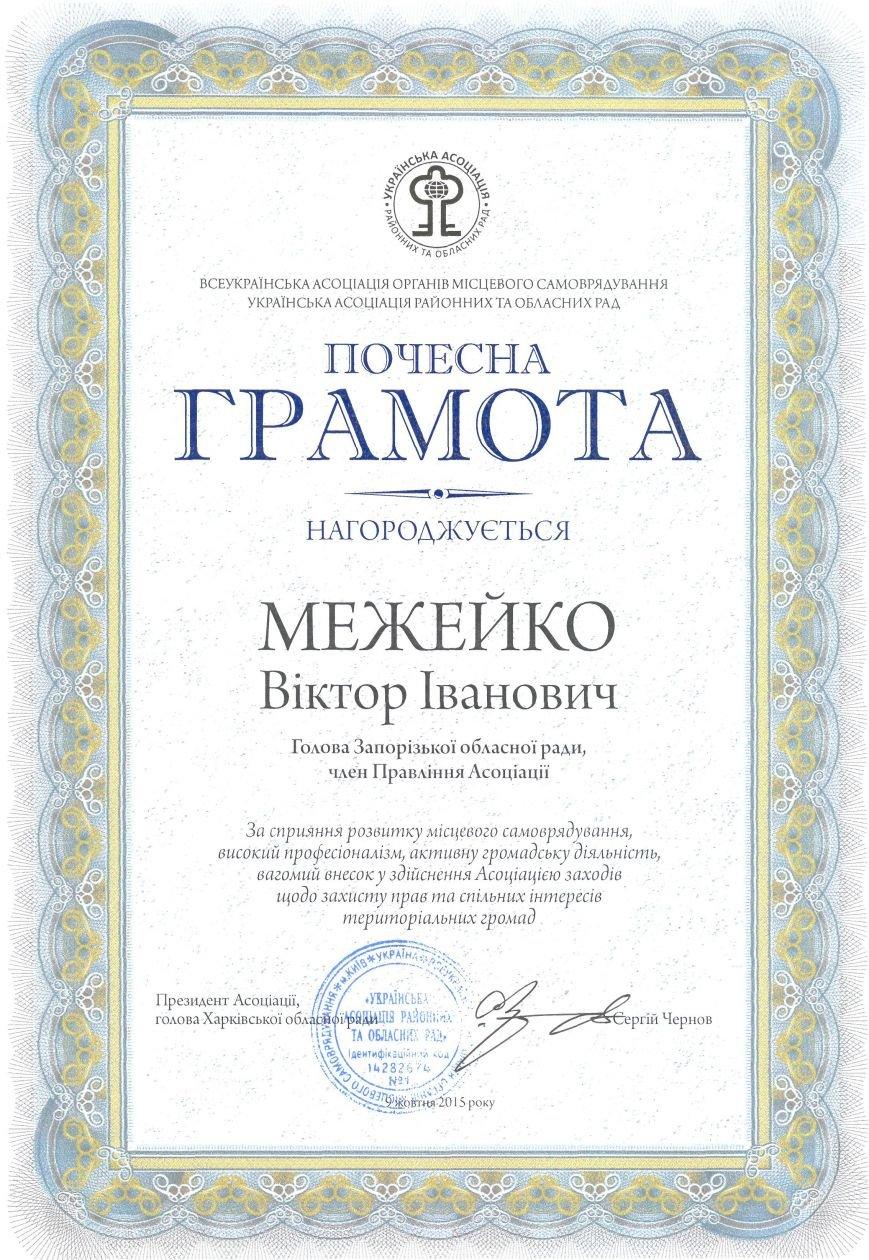 Одного из организаторов разгона запорожского майдана наградили грамотой «за активную общественную деятельность», фото-1