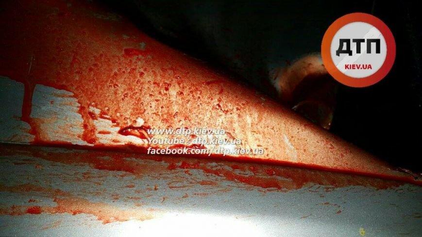 В Киеве во время ДТП мужчину разорвало на части (ФОТО, ВИДЕО), фото-1