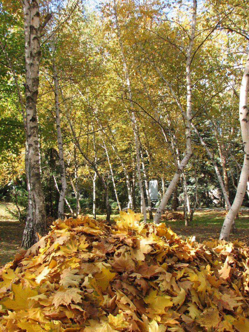 Николаевскому зоопарку нужны «свободные руки» для уборки листвы (ФОТО), фото-2