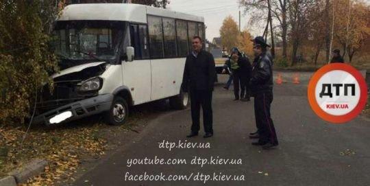 Под Киевом маршрутка врезалась в дерево: пострадало 7 человек (ФОТО), фото-1
