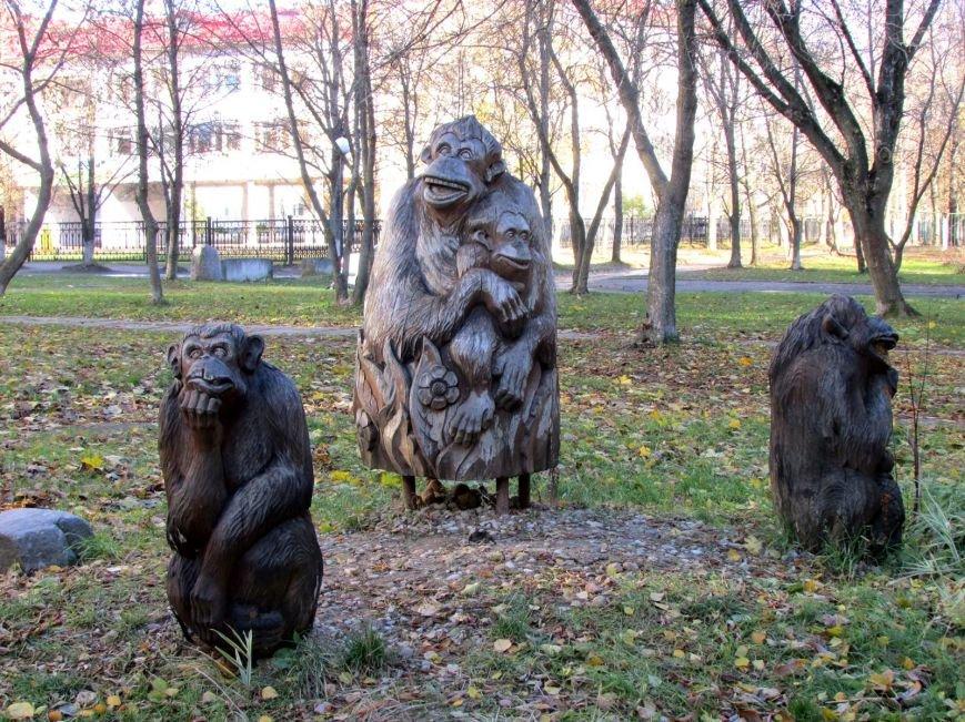 Дракон, обезьяны и медведь: фотопрогулка по дворам и паркам Новополоцка, фото-7
