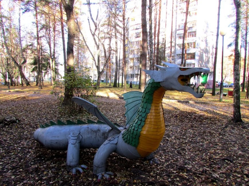 Дракон, обезьяны и медведь: фотопрогулка по дворам и паркам Новополоцка, фото-5