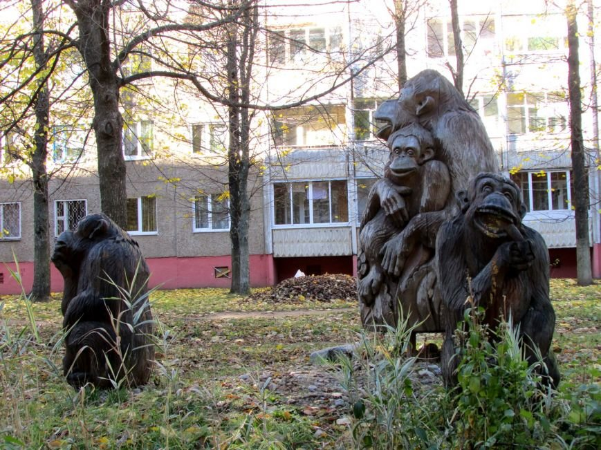 Дракон, обезьяны и медведь: фотопрогулка по дворам и паркам Новополоцка, фото-8