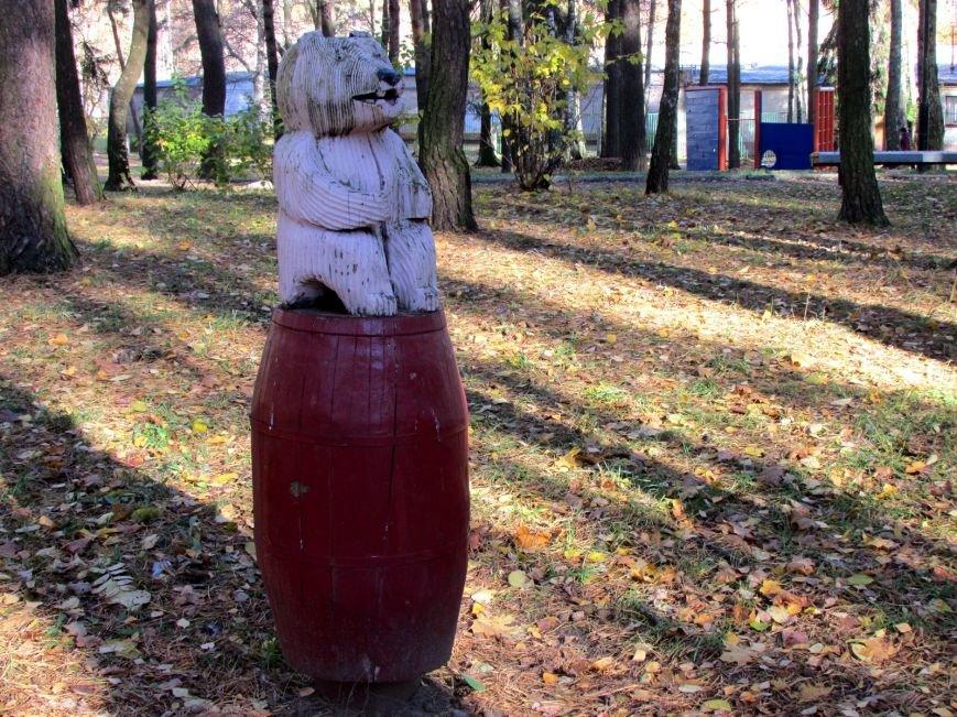Дракон, обезьяны и медведь: фотопрогулка по дворам и паркам Новополоцка, фото-9