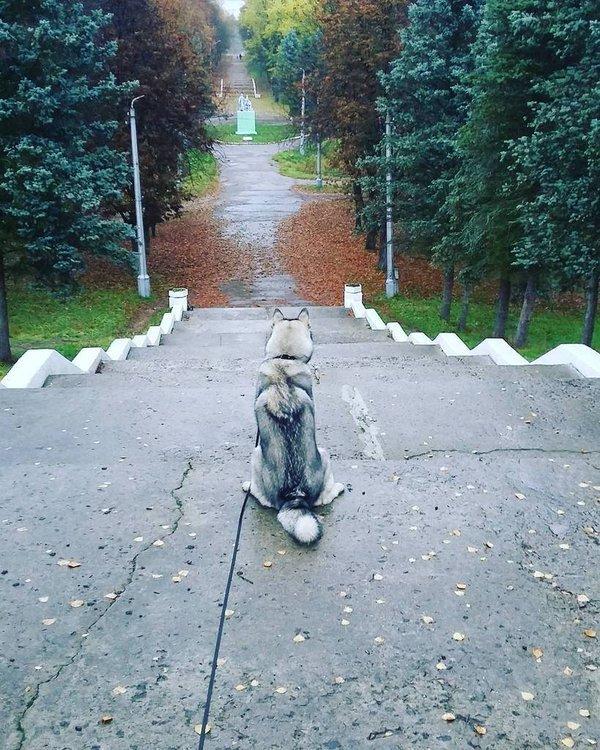 15 лучших октябрьских фото Полоцка и Новополоцка в Instagram (фото) - фото 11