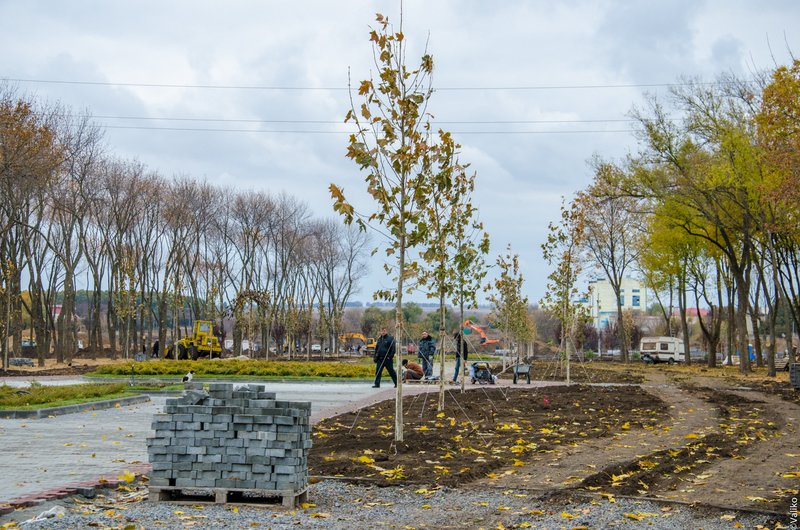 В Синельниково строят первый парк для отдыха (фото) - фото 1