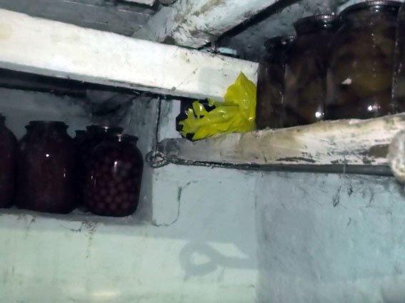 Димитровские правоохранители обнаружили в шкафу у 25-летнего парня гранату с запалом (фото) - фото 3