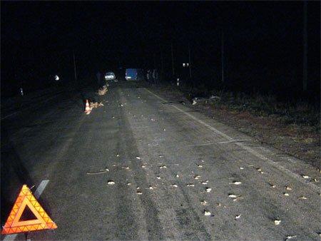 Меньше чем за сутки на Сумщине произошло два ДТП с летальным исходом (ФОТО+ВИДЕО), фото-2
