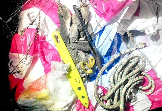 На Полтавщині затримали крадіїв кольорового металу (фото) - фото 2