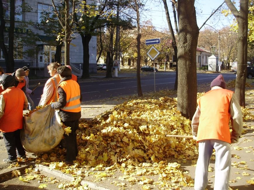 Николаевские коммунальщики воюют с опавшей листвой (ФОТО) (фото) - фото 2