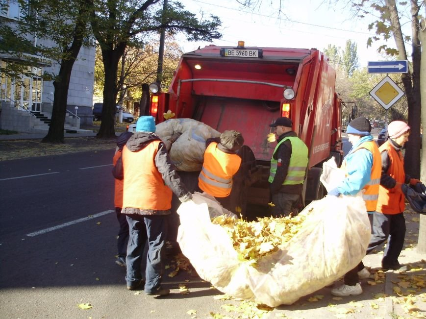 Николаевские коммунальщики воюют с опавшей листвой (ФОТО) (фото) - фото 6
