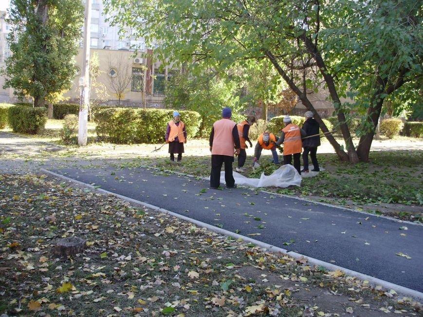 Николаевские коммунальщики воюют с опавшей листвой (ФОТО) (фото) - фото 9