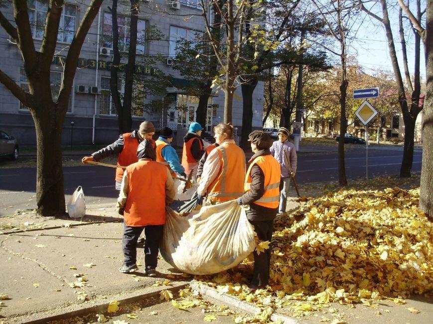 Николаевские коммунальщики воюют с опавшей листвой (ФОТО) (фото) - фото 3
